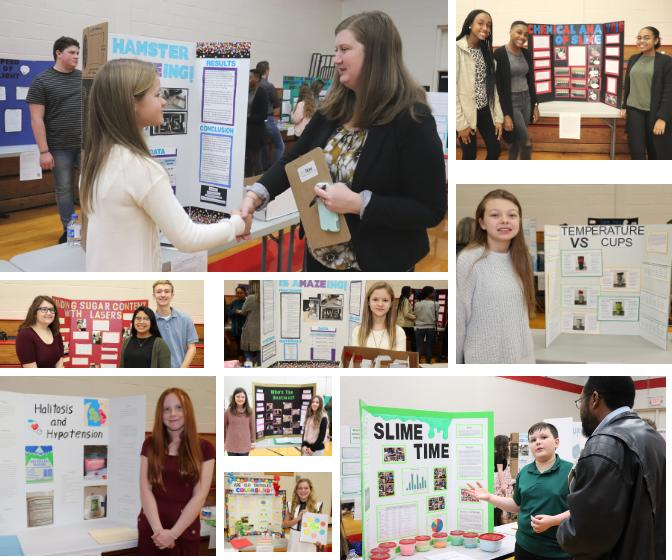 Gold Winners - Picture Collage