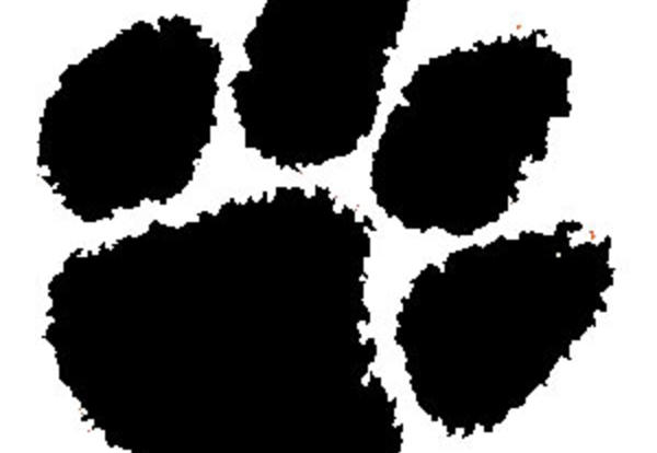 News Tiger Paw