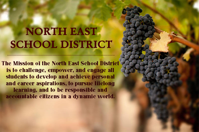 The Mission of the North East School District is to challenge, empower, and engage all students to develop and achieve personal and career aspirations, to pursue lifelong learning, and to be responsible and accountable citizens in a dynamic world.