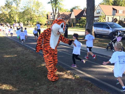 Tiger mascot high fiving runners