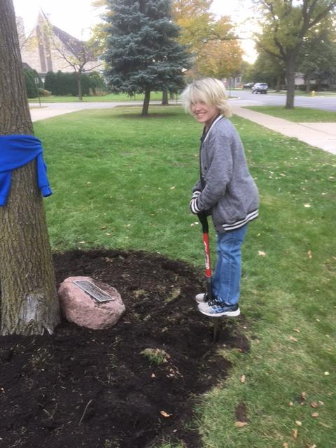 person with shovel by tree with large rock