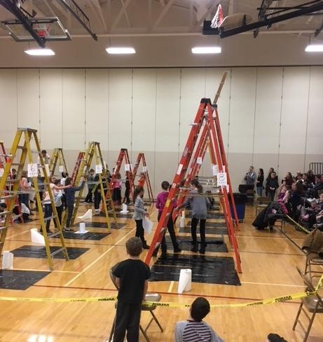 ladders for egg drop event