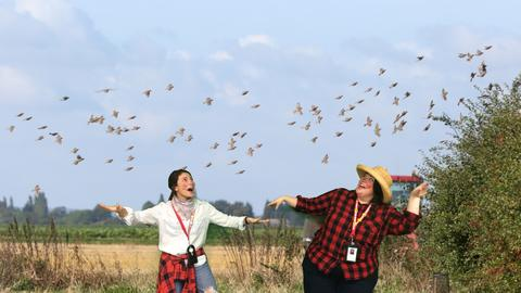 Farmers with birds costumes