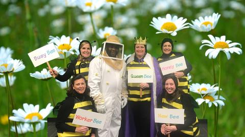 bee keeper with bees costume