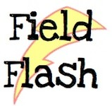 Logo of Field Flash