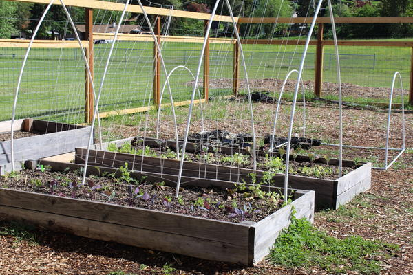 Students Will Learn How To Be Sustainable Stewards Of The Land, Be Exposed To  Gardening ...