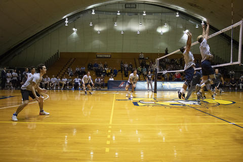 Men's Volleyball team in excellent form as they block the alumni's spike.