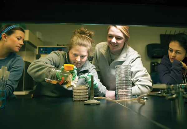 A group of four girls in a science lab experimenting