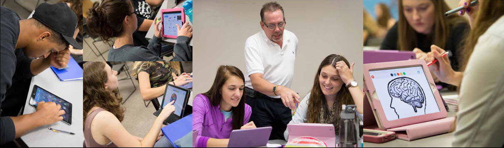 Collage with male and female students and professors learning on their laptops and tablets