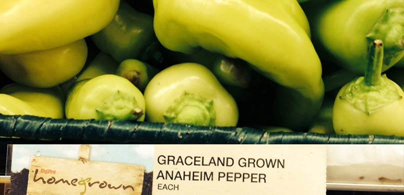 graceland grown peppers