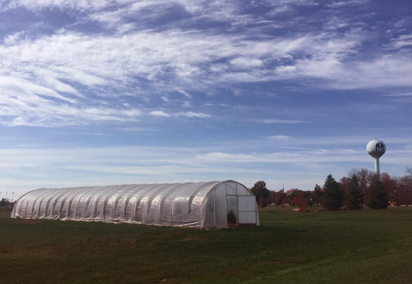 Autumn at the Hoop House