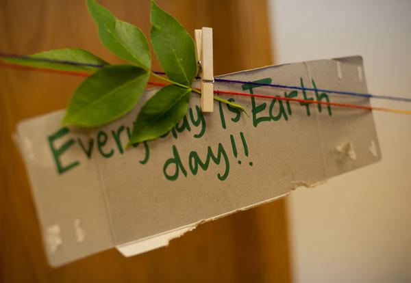 16 easy ways to help the environment while living at Graceland