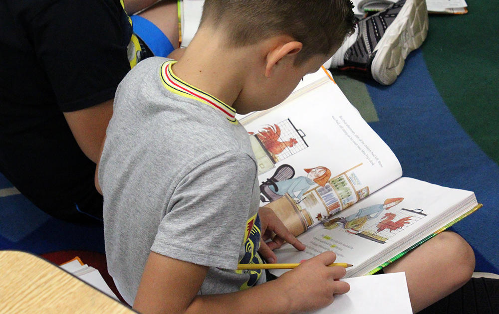 An Elmwood 2nd-grade student reads during class.