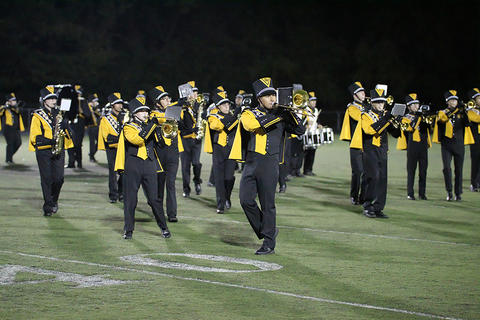 Homecoming Game: Marching Tigers at Halftime