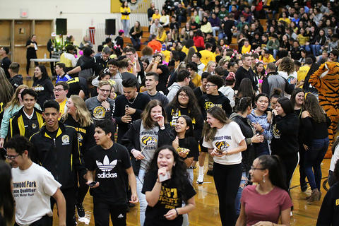Black & Gold Day Pep Assembly: Dance Off Ends — Back to the Bleachers