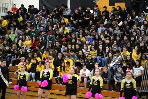 Black & Gold Day Pep Assembly: Listening to Principal Wildes