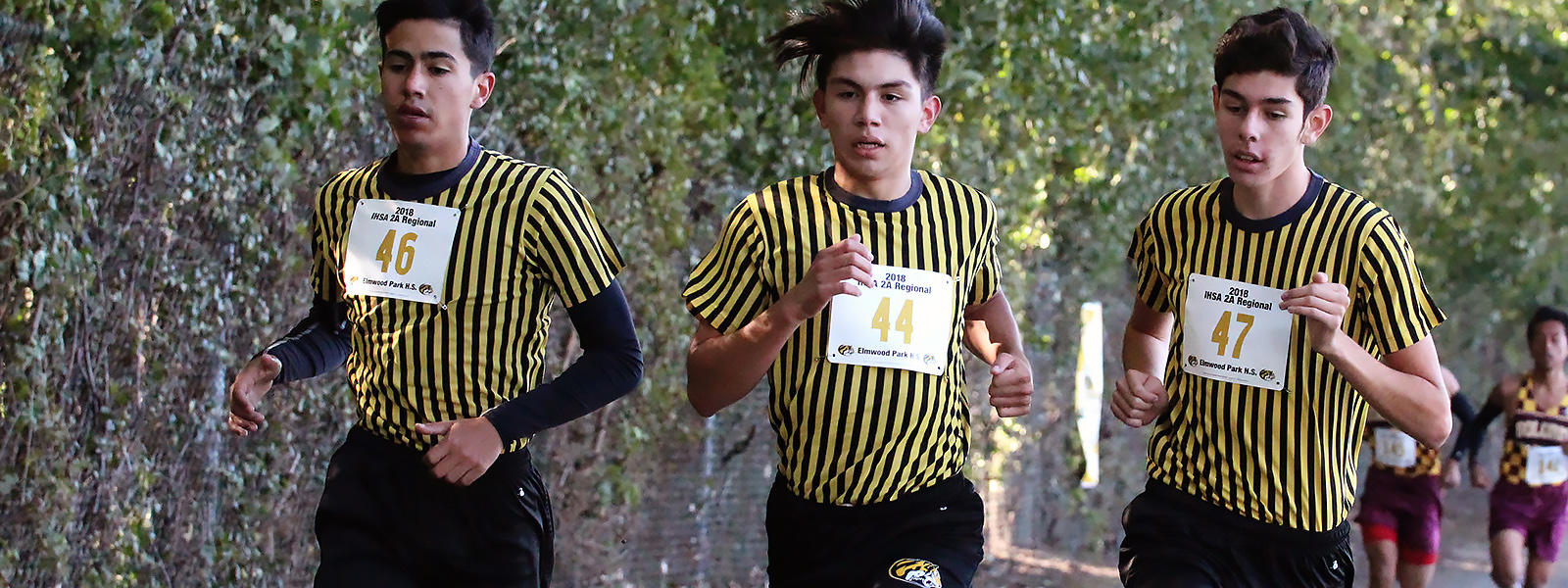 EPHS runners head toward a regional championship.