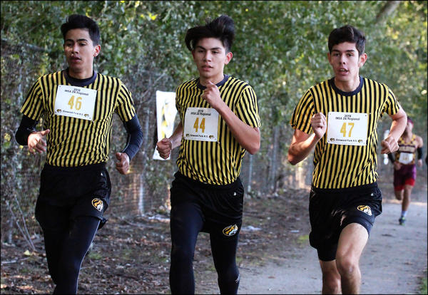 Elmwood Park seniors Carlos Sanchez, Tyler Ocampo and Khris Vicencio set the pace for the rest of the field at the Oct. 20 IHSA Class 2A regional meet hosted by EPHS.