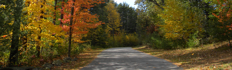 Country road with leaves changing on trees