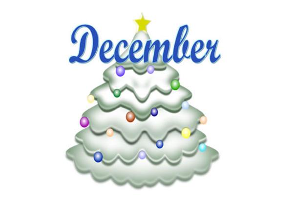 Radix's December Newsletter