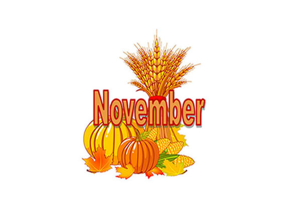 Holly Glen's November Newsletter