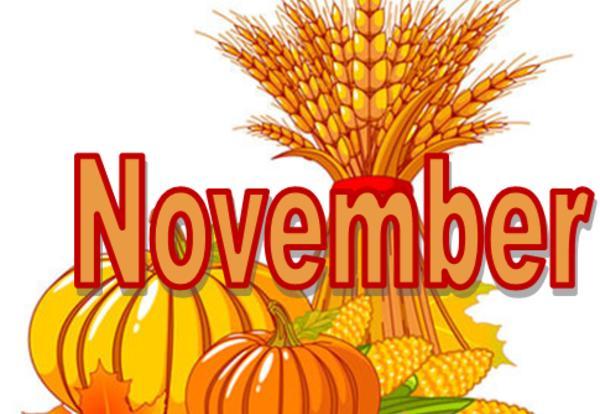 Holly Glen's November Newsletter