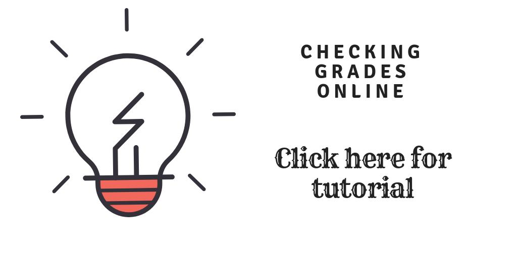 How to check grades online