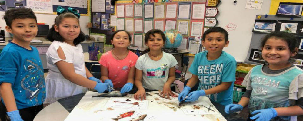 Mission View Biologists Dissecting Salmon