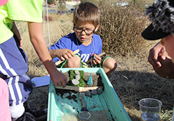 Students experiment in soil erosion