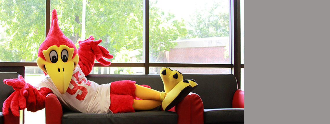 Redd T Raven chilling on a sofa in the student lounge area of Weinberg Hall.