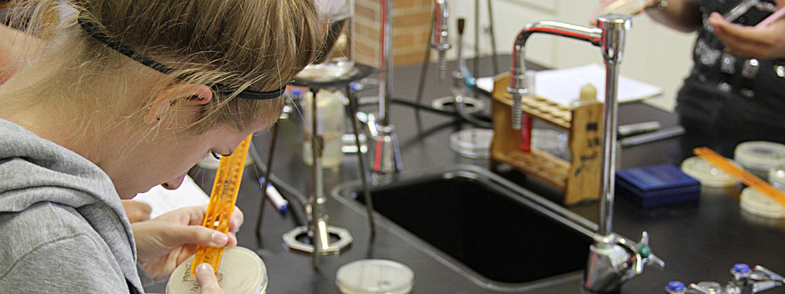 Photo of Student Working on Biology Lab Experiment