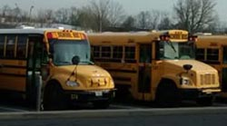Bus Feasibility Study