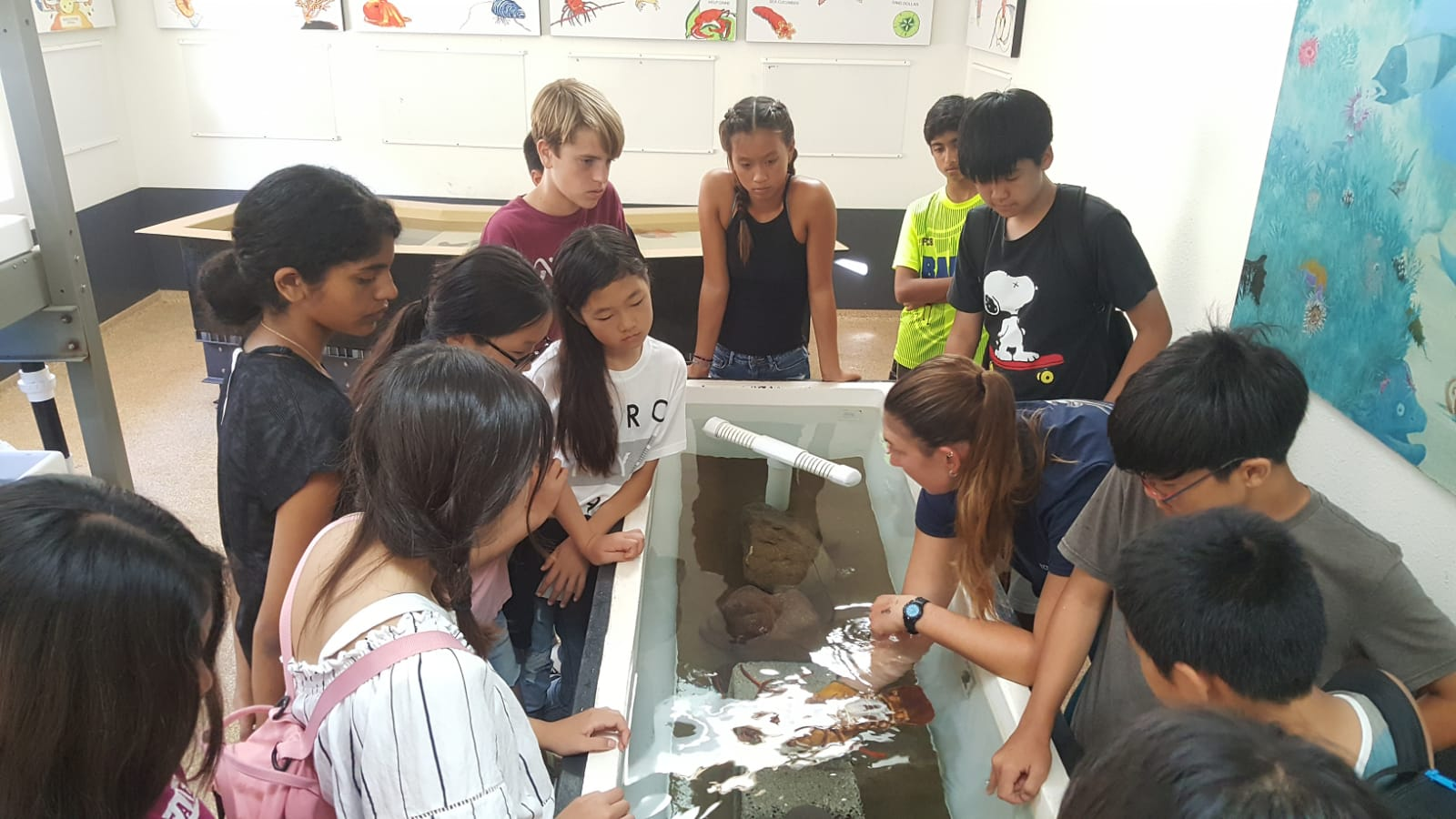 CIMI Touch Tank