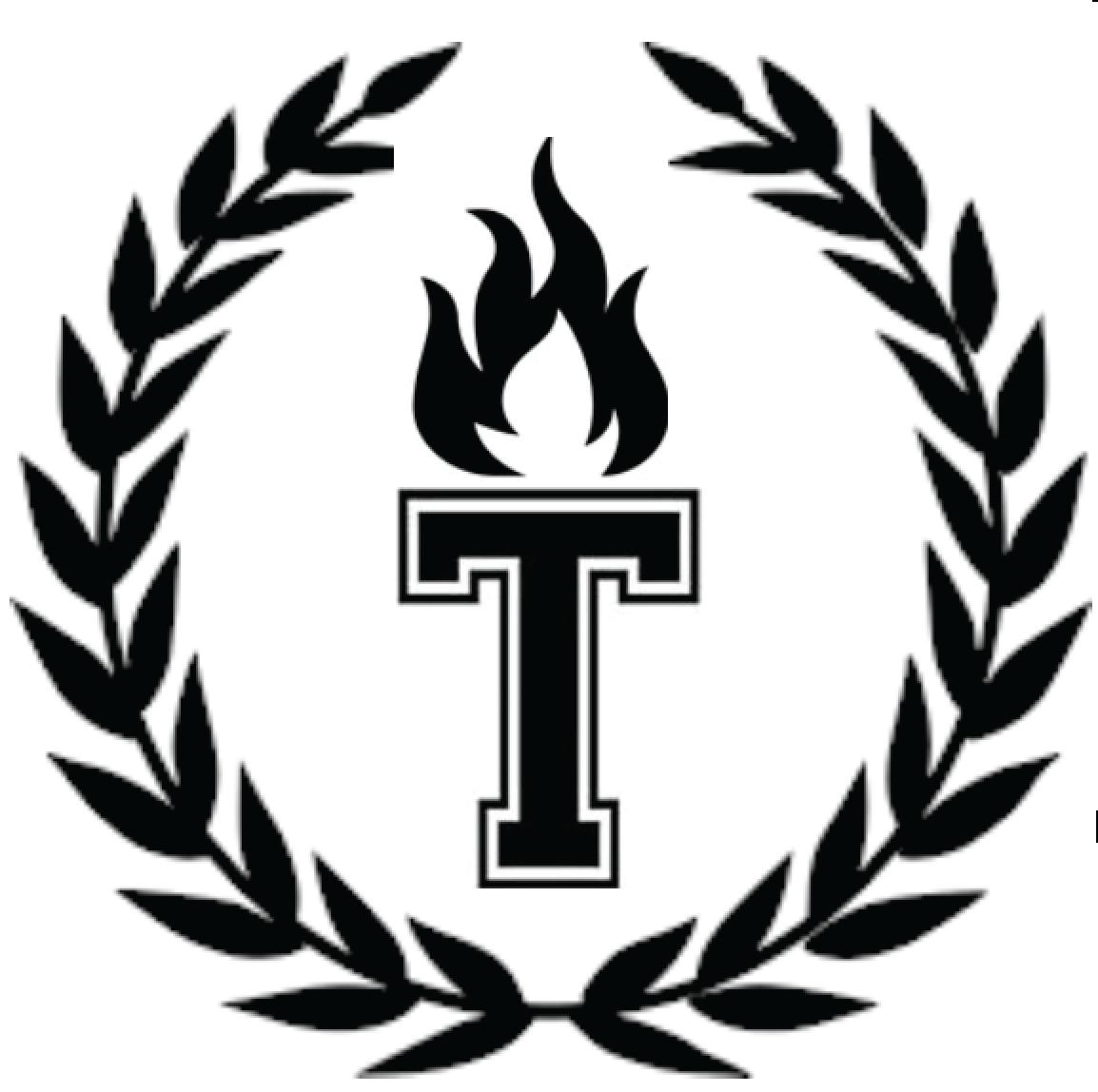 THS News Torch logo