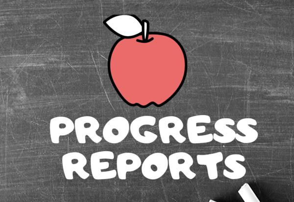 Progress Reports Info