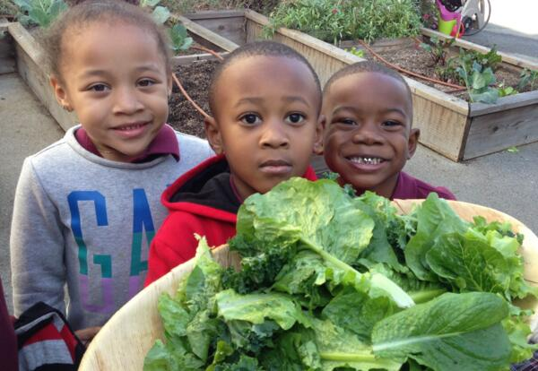 Learning & Growing in the Garden: KIPP SoCal Partners with GrowingGreat