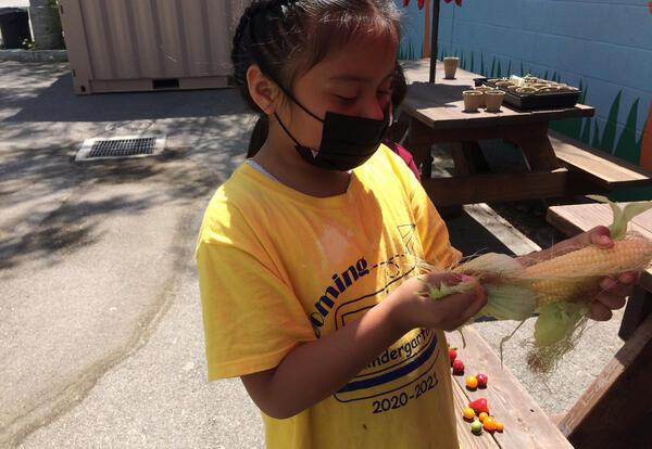 KIPP's Virtual Garden Club