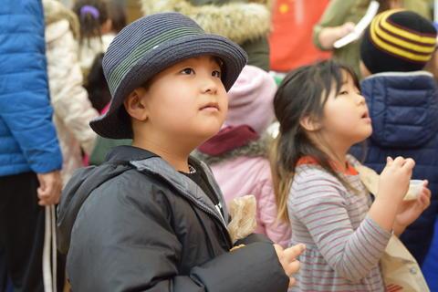 Cultural Fair - Photo #21