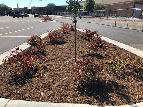 Landscaping in the North Parking Lot is now complete and the parking lot is open for use!