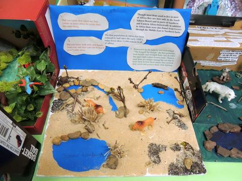 second grade animal projects district