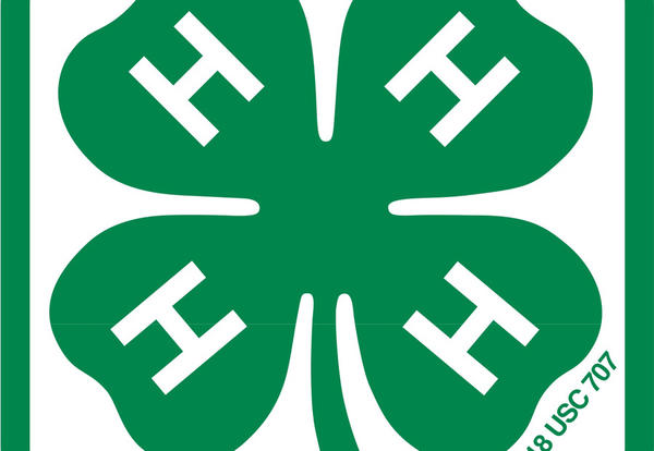 DeKalb County 4H Offers Maker Day Event on March 27th