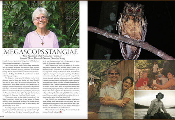 Megascops Stangiae: New Species of Owl Named in Honor of Sister of Notre Dame de Namur Dorothy Stang