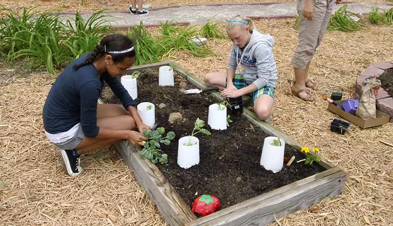 Two students are planting