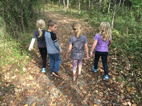 A Walk In The School Forest