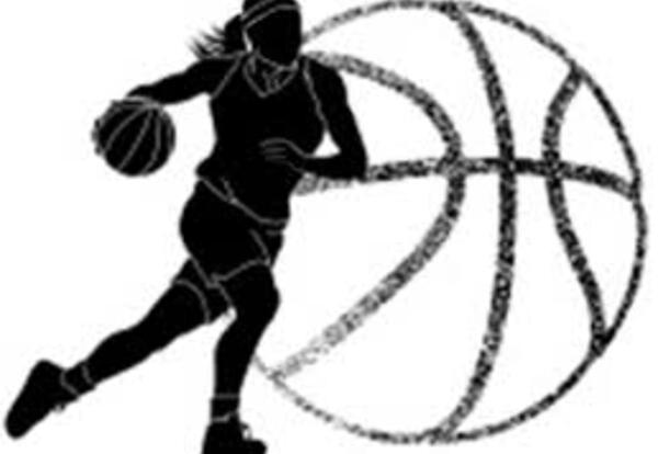 Pulaski Girls Basketball Opportunity