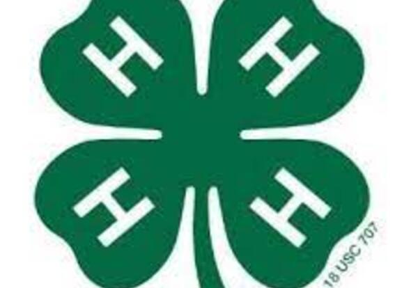 Shawano 4-H Summer Programs