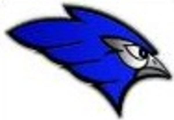 Blue Jay Mascot Image