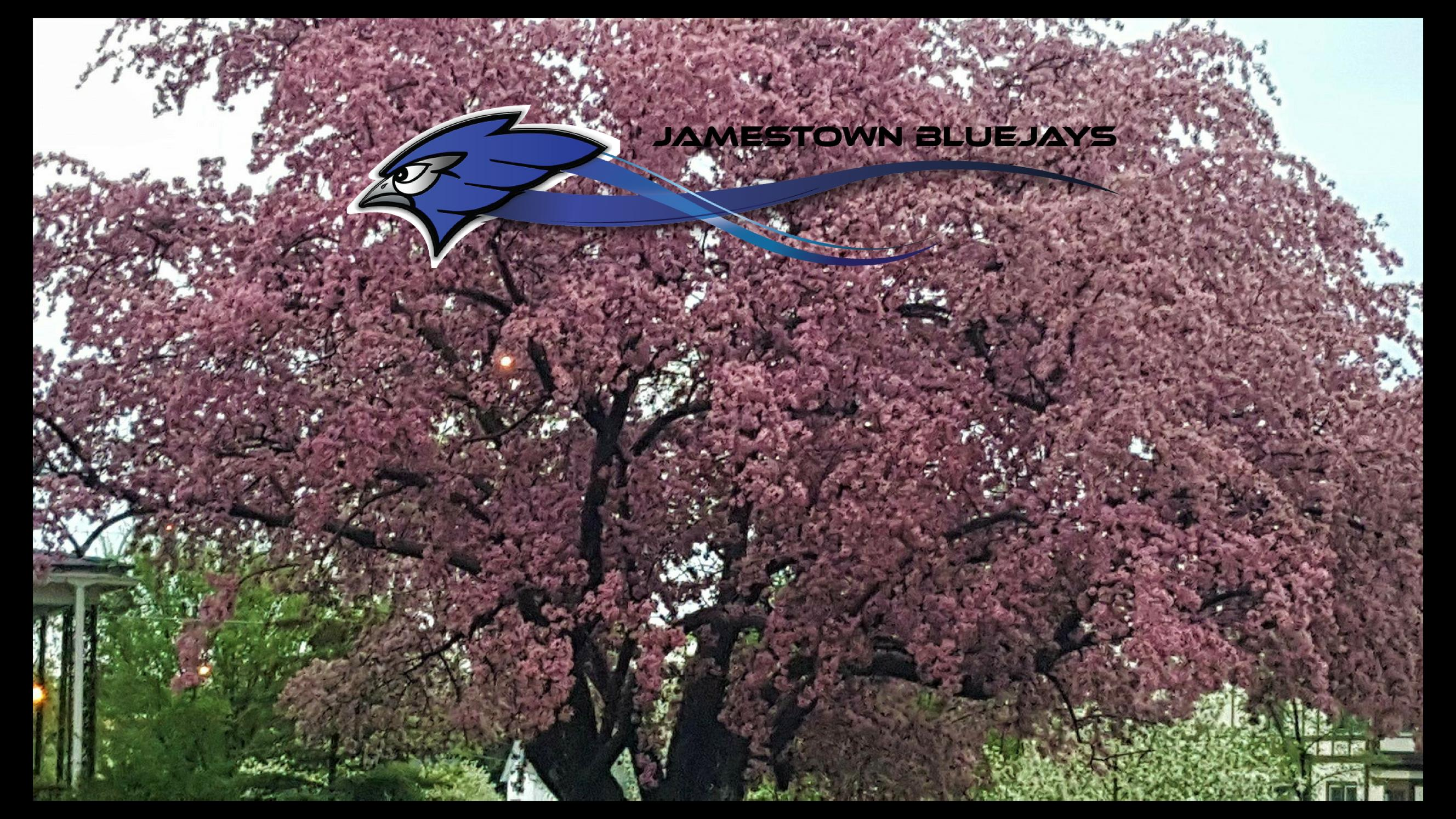Spring tree in bloom with JPS Logo