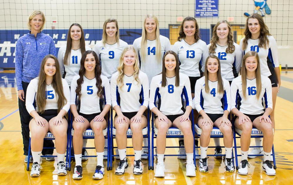2018 Girls Volleyball Team Picture