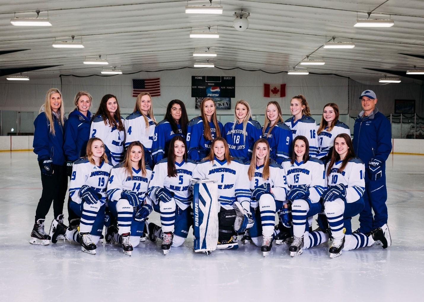 2019-2020 Girls Hockey Team Picture